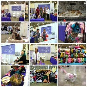 National Capital Cat Show2015 collage