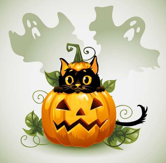 halloween cat img